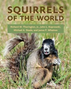 Zdjęcie Squirrels of the World