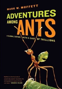 Zdjęcie Adventures Among Ants: A Global Safari with a Cast ...