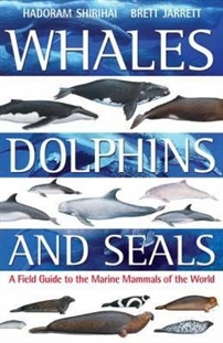 Zdjęcie Whales,Dolphins and Seals