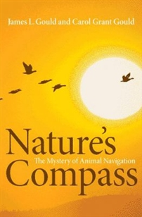 Zdjęcie Nature's Compass: The Mystery of Animal Navigation