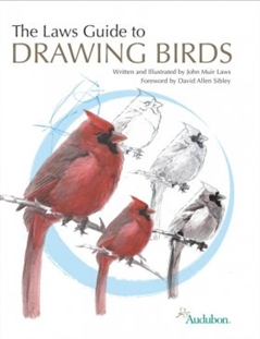 Zdjęcie The Laws Guide to Drawing Birds