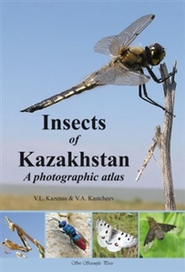 Zdjęcie Insects of Kazakhstan: A Photographic Atlas