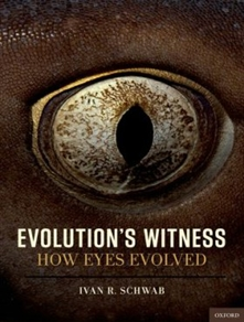 Zdjęcie Evolution's Witness: How Eyes Evolved