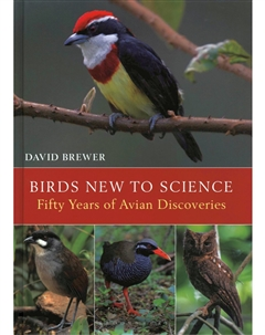 Zdjęcie Birds New to Science: Fifty Years of Avian Discoveries