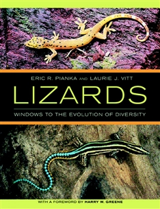 Zdjęcie Lizards: Windows to the Evolution of Diversity