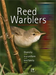 Zdjęcie The Reed Warblers: Diversity in a Uniform Bird Family