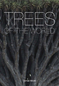 Zdjęcie Trees of the World