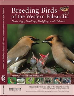 Zdjęcie Breeding Birds of the Western Palearctic (DVD-ROM)