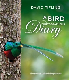 Zdjęcie A Bird Photographer's Diary: The Stories behind the Pic