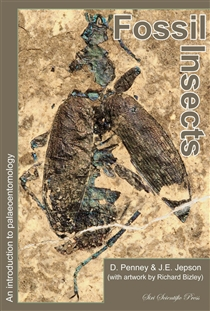 Zdjęcie Fossil Insects: An Introduction to Palaeoentomology
