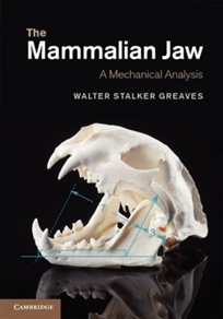 Zdjęcie The Mammalian Jaw: A Mechanical Analysis