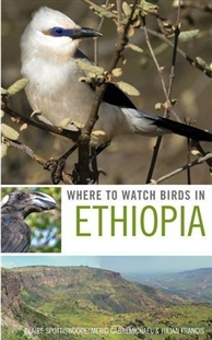 Zdjęcie Where to Watch Birds in Ethiopia