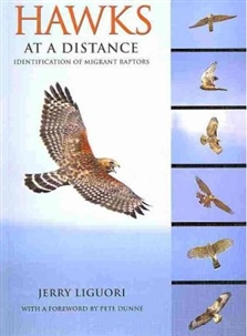 Zdjęcie Hawks at a Distance: Identification of Migrant Raptors