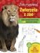 Jak rysować Zwierzęta w zoo