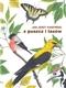 Z puszcz i lasów - audiobook