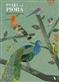 Ptaki i ich pióra