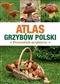 Atlas Grzybów Polski. Poradnik Grzybiarza