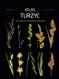 Atlas turzyc z kluczami do oznaczania gatunków