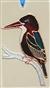 Zimorodek krasnodzioby - obrazek na szkle