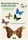 Dlaczego motyl zjada muchę