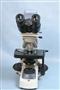 Mikroskop Optek Digital 3 MPIX