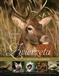 Zwierzęta w obiektywie leśników
