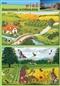 Wieś - środowisko w którym żyję - plansza