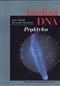 Analiza DNA. Praktyka