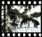 Krajobraz, 21 przeźroczy