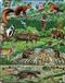 Las północny - puzzle
