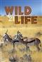 Wilde Life - kalendarz ścienny 2021