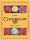 Chryzantemy - odmiany i uprawa