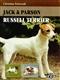 Jack & Parson Russel Terrier