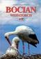 Bocian (pol-niem)