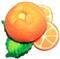 Pomarańcza -  magnes