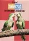 Świat zwierząt. Gady, ptaki, owady i ...