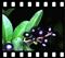 Ekosystem lasu, 35 przeźroczy