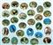 Bociany czarne - naklejka (NZ27)
