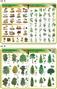 Rośliny i grzyby - podkładka edukacyjna