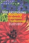 Rośliny rabatowe i balkonowe