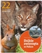 Dzikie zwierzęta w Polsce. 22 gatunki
