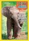 Słoń. Dzikie Zwierzęta