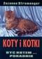 Koty i kotki