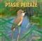 Ptasie pejzaże - CD