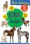 Konie i kucyki Nasi ulubieńcy