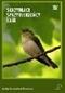 Skrzydlaci sprzymierzeńcy lasu - DVD