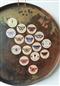 Motyle - zestaw 15 magnesów