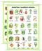 Warzywa z naszego ogrodu - plansza dydaktyczna