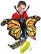 Od gąsienicy do motyla - modele nadmuch.
