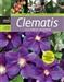 Clematis i inne pnącza ogrodowe